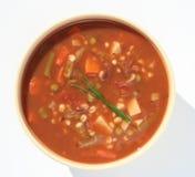Potage aux légumes Photo libre de droits