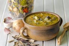 Potage aux légumes avec des champignons de couche Image stock