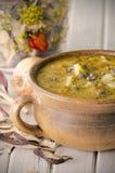 Potage aux légumes avec des champignons de couche Photo libre de droits