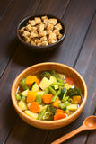 Potage aux légumes avec des croûtons Photo stock
