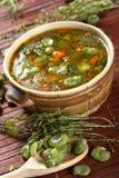 Potage aux légumes avec des haricots images libres de droits
