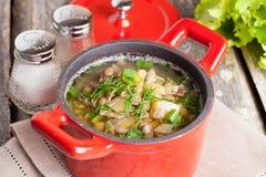 Potage aux légumes avec des lentilles, plan rapproché Photo libre de droits