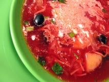 Potage aux légumes - borsch Images libres de droits