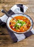 Potage aux légumes de Minestrone avec le parmesan. Images libres de droits