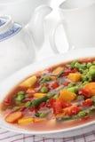 Potage aux légumes de régime photo libre de droits
