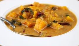 Potage aux légumes des Caraïbes Photos stock
