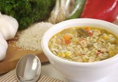 Potage aux légumes fait maison de poulet Image libre de droits