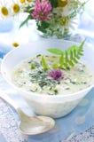 Potage aux légumes froid images libres de droits