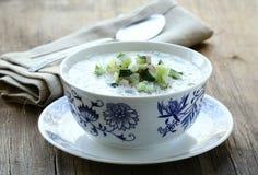 Potage aux légumes froid Image stock