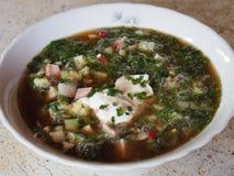 Potage aux légumes froid avec le kvas image libre de droits