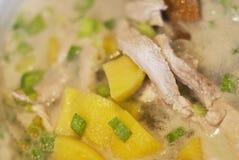 Potage avec de la viande et des pommes de terre Photographie stock