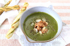 Potage d'épinards Photos stock