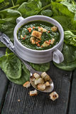 Potage d'épinards Images stock