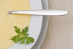 Potage de cheddar Images stock