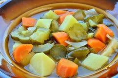 Potage de concombre Image stock