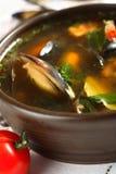 Potage de fruits de mer avec le persil photo libre de droits