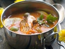 Potage de poissons Photos libres de droits
