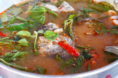 Potage de Tom Yum Photographie stock