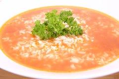 Potage de tomate Photographie stock libre de droits