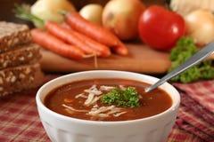 Potage de tomate Images libres de droits