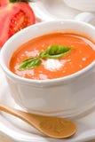 Potage de tomate Image stock