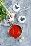 Potage de tomate Photos stock