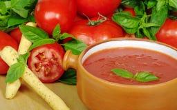 Potage de tomate dans la cuvette Photographie stock