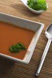 Potage de tomate dans la cuvette carrée. Image libre de droits
