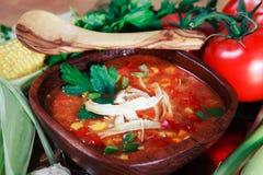 Potage de tortilla de poulet avec les légumes frais photographie stock libre de droits