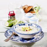 Potage froid photographie stock