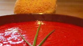 potage rouge Image libre de droits