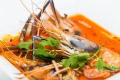 Potage thaï de crevette Images stock
