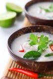 Potage thaï de lait de poulet et de noix de coco Photos libres de droits