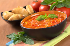 Potage volumineux de tomate Photographie stock