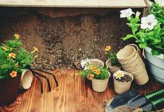 Potager et fleurs de jardin Photographie stock