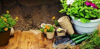 Potager et fleurs de jardin Photographie stock libre de droits