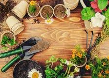 Potager et fleurs de jardin Image libre de droits
