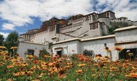 potala дворца стоковое изображение rf