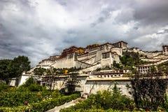 potala Тибет дворца стоковые фото