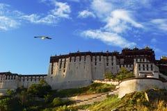 Potala Palace Royalty Free Stock Images