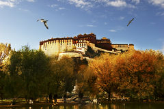 Potala Palace Royalty Free Stock Image
