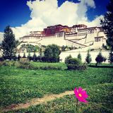 Potala. The potala palace in the day stock photos