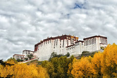 Potala palace in Lhasa (autumn ) Royalty Free Stock Image