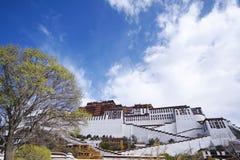 Potala palace, Tibet. Front view of Potala palace, Lhasa, tibet Royalty Free Stock Photography