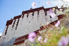 Potala Palance, Тибет Стоковое фото RF