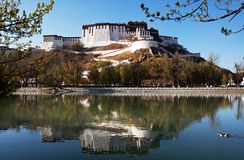 Potala Royalty Free Stock Photo