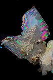 Potassium alum crystals. A potassium alum crystal seen through a microscope in polarized light Royalty Free Stock Photo