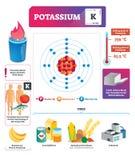 Potassium vector illustration. Chemical element characteristics and uses. Potassium vector illustration. Chemical element substance characteristics uses royalty free illustration