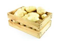 Potatis Arkivbild