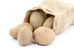 potatis fotografering för bildbyråer